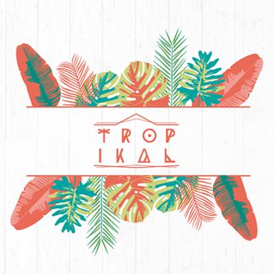 Confira o que rolou no Tropikal 2020! 1